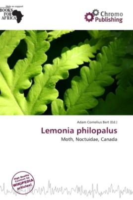 Lemonia philopalus