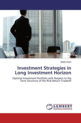 Investment Strategies in Long Investment Horizon