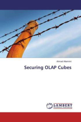 Securing OLAP Cubes