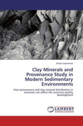 Clay Minerals and Provenance Study in Modern Sedimentary Environments