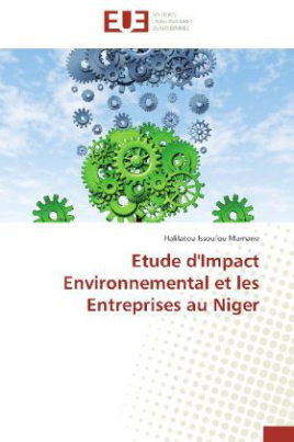Etude d'Impact Environnemental et les Entreprises au Niger