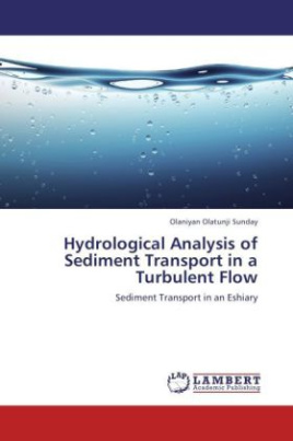 Hydrological Analysis of Sediment Transport in a Turbulent Flow