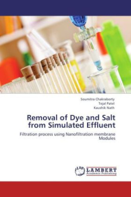Removal of Dye and Salt from Simulated Effluent