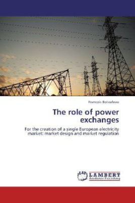 The role of power exchanges