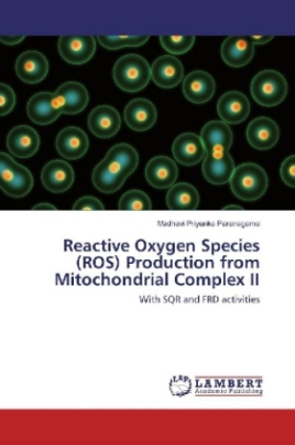 Reactive Oxygen Species (ROS) Production from Mitochondrial Complex II