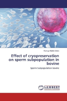 Effect of cryopreservation on sperm subpopulation in bovine