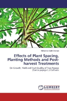 Effects of Plant Spacing, Planting Methods and Post-harvest Treatments
