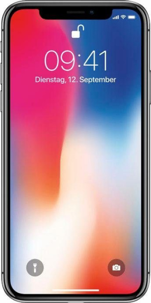 "APPLE Smartphone ""iPhone X"" (64 GB, space grau)"