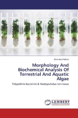 Morphology And Biochemical Analysis Of Terrestrial And Aquatic Algae