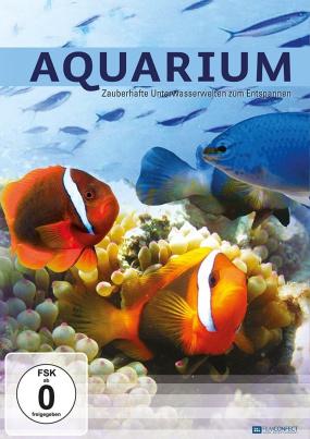 Aquarium - Zauberhafte Unterwasserwelten zum Entspannen
