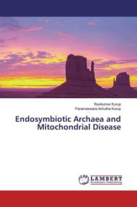 Endosymbiotic Archaea and Mitochondrial Disease