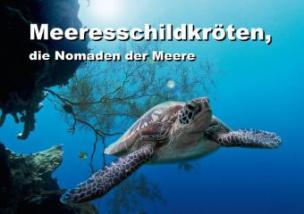 Meeresschildkröten, die Nomaden der Meere (Posterbuch DIN A4 quer)