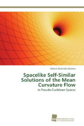 Spacelike Self-Similar Solutions of the Mean Curvature Flow