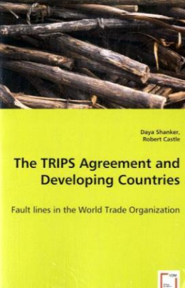 The TRIPS Agreement and Developing Countries