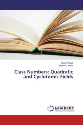 Class Numbers: Quadratic and Cyclotomic Fields