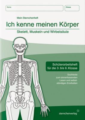 Ich kenne meinen Körper - Skelett, Muskeln und Wirbelsäule