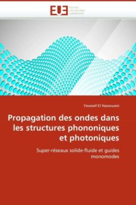 Propagation des ondes dans les structures phononiques et photoniques