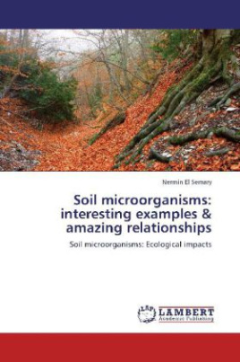 Soil microorganisms: interesting examples & amazing relationships