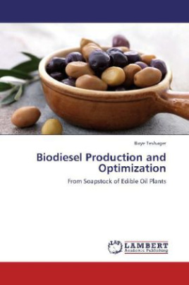 Biodiesel Production and Optimization