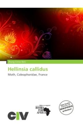 Hellinsia callidus