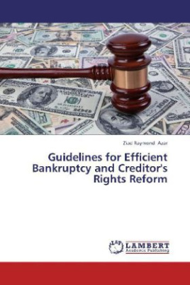Guidelines for Efficient Bankruptcy and Creditor's Rights Reform