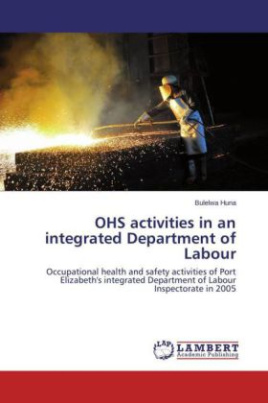 OHS activities in an integrated Department of Labour