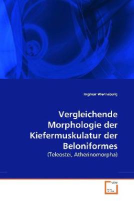 Vergleichende Morphologie der Kiefermuskulatur der Beloniformes