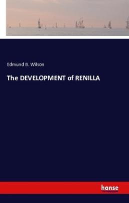 The DEVELOPMENT of RENILLA